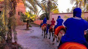 3 Days in Marrakech – a Winter City Break