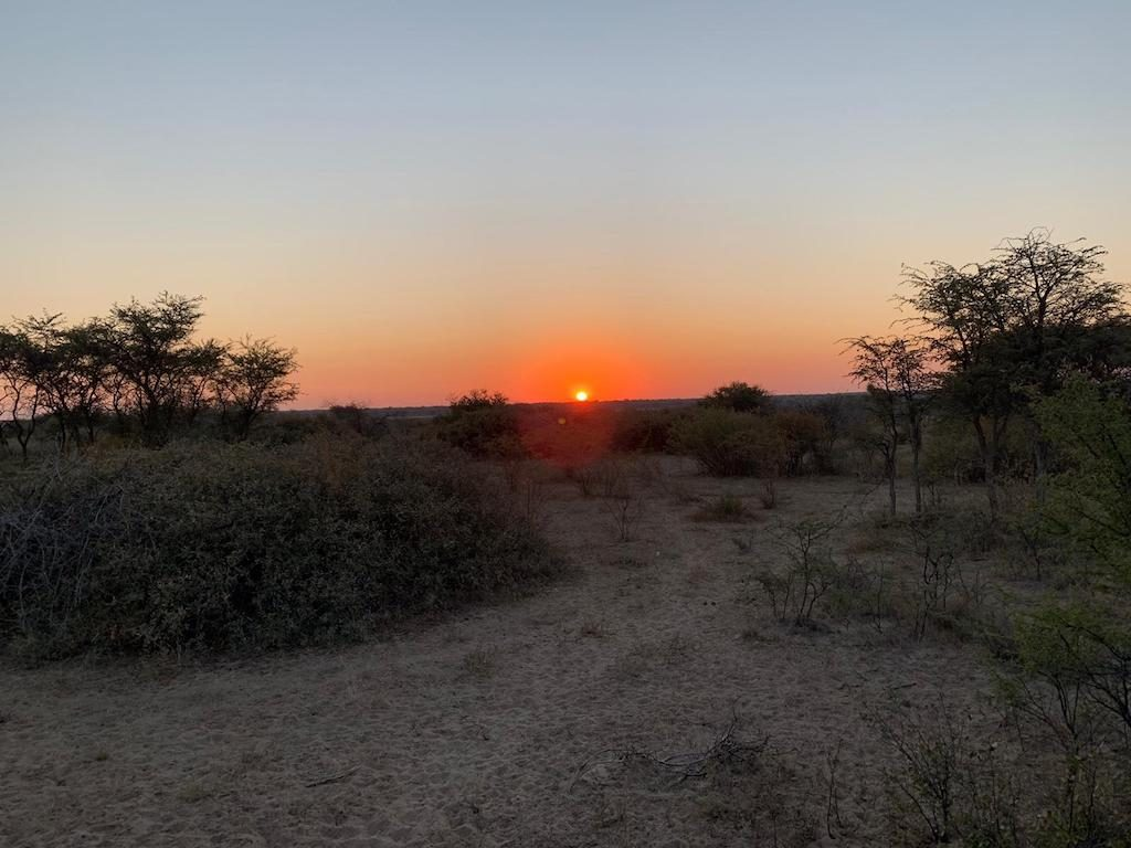 Sunrise safari through the Kalahari Desert with G Adventures Africa