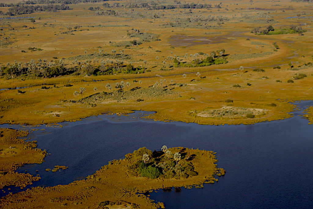 The waters of the Okavango Delta flowing from the Angola Highlands with G Adventures Africa