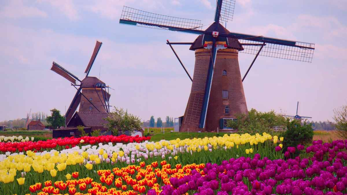 Best Cities in the Netherlands Cover Photo