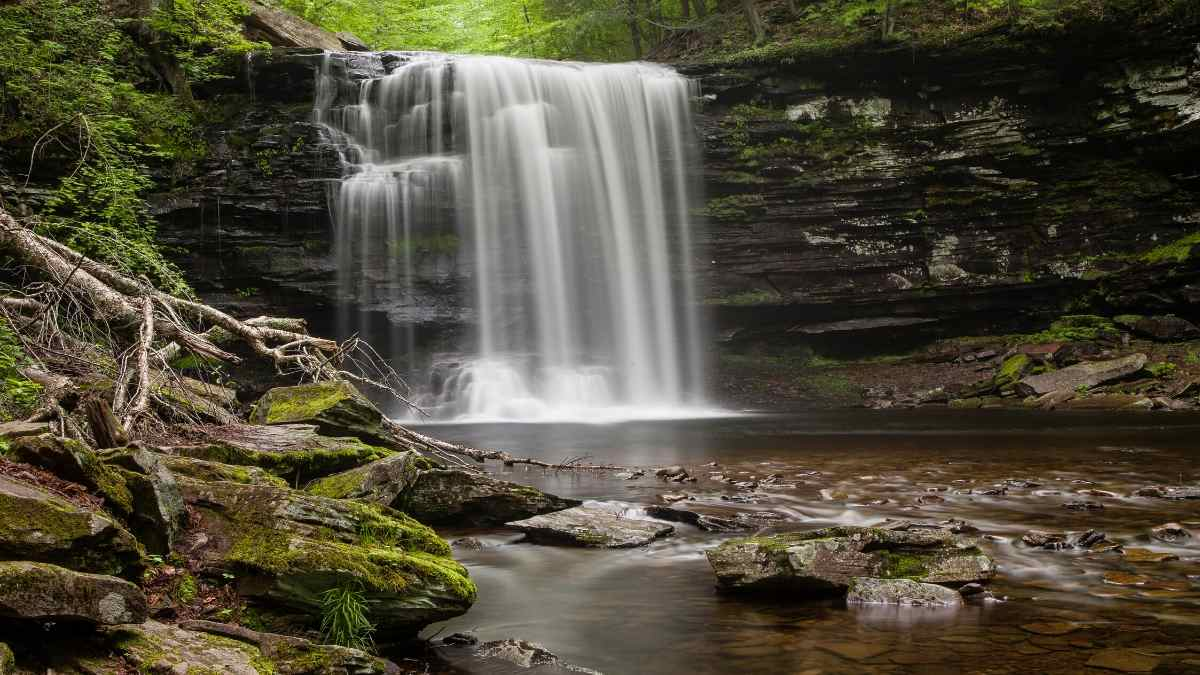 ricketts glen state park day trips from phildelphia