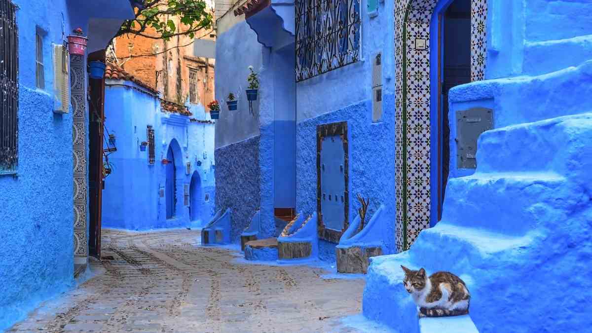 what to do in tangier day trip to Chefchaouen