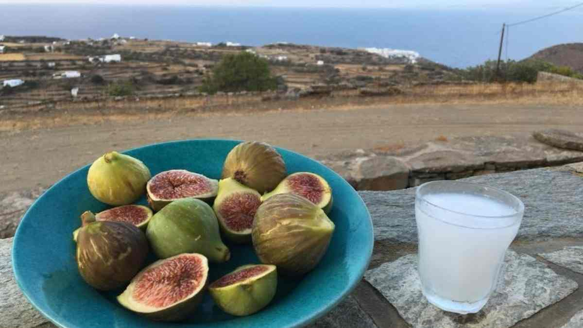figs and ouzo on sifnos island