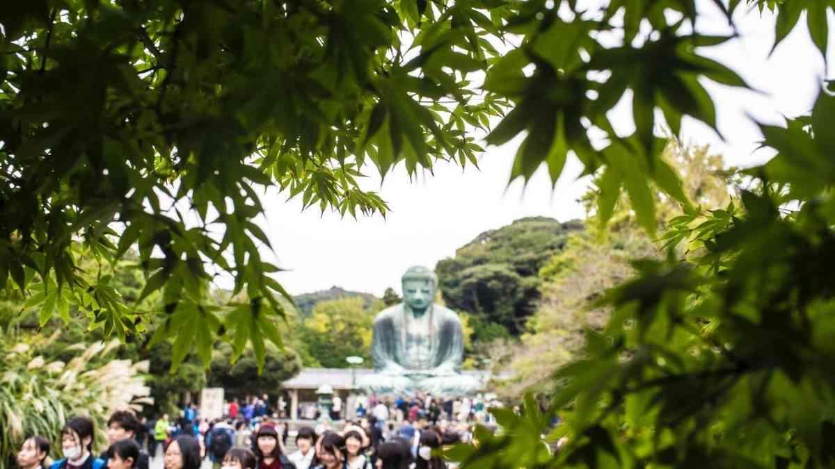 kamakura things to do in japan bucket list