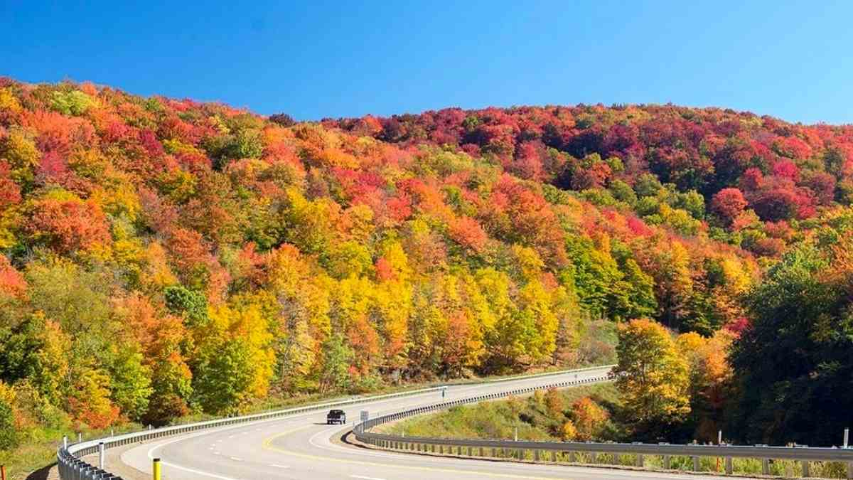 route 6 fall foliage in the poconos